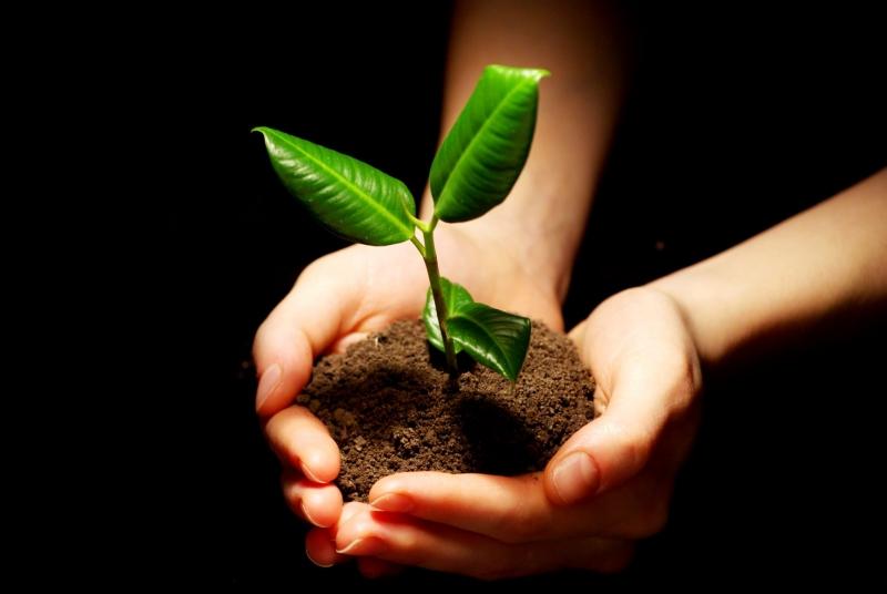 mito medio ambiente